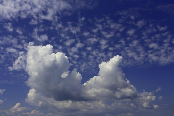 Mittelstand als Cloud-Treiber.