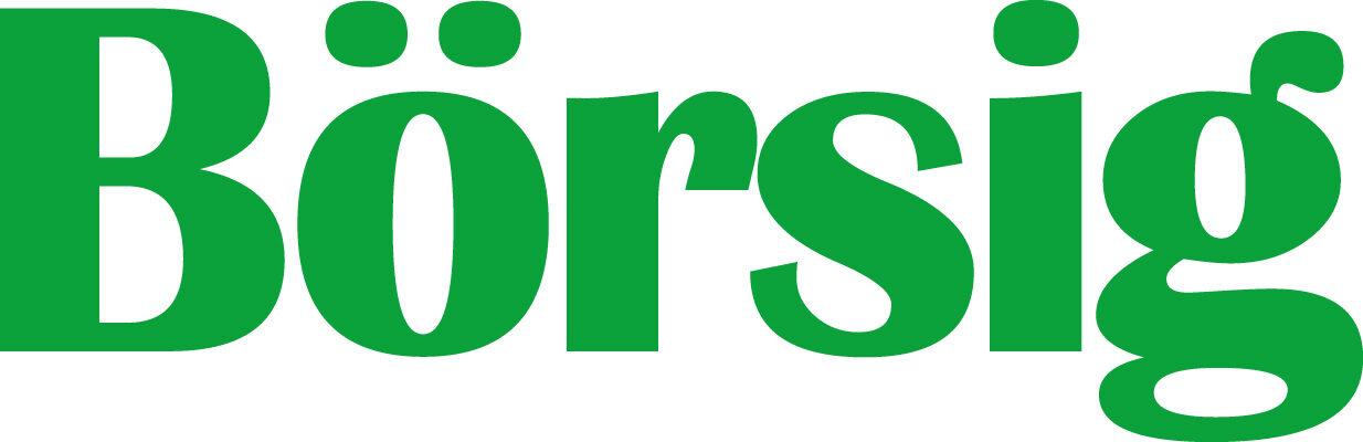 Börsig Logo