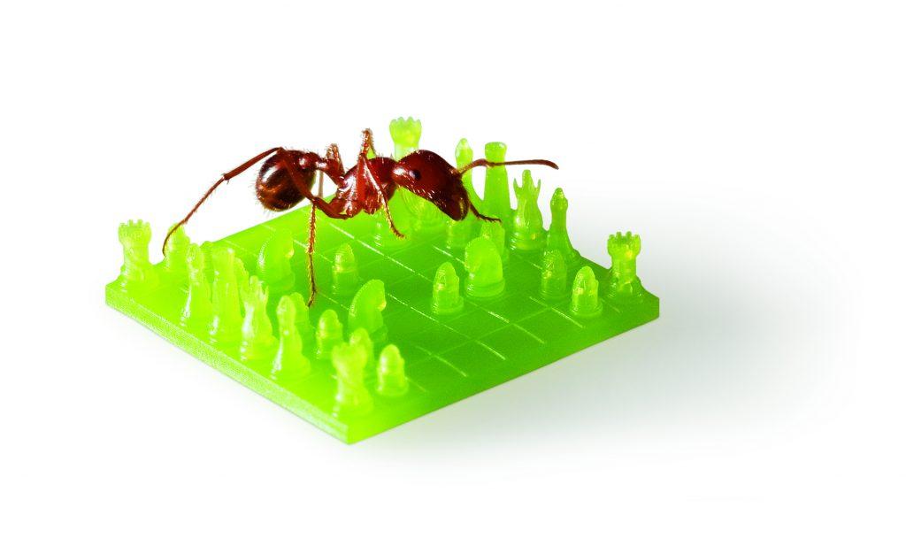 protolabs_ant_on_green_chessboard-300dpi